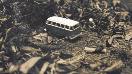 vintage-bug-bus-7